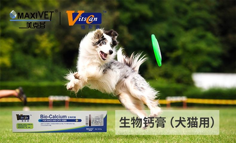 维斯康 犬猫专用迅速补钙膏宠物保健品 120.5g 补钙健骨