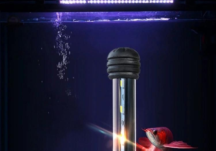 海亿 龙鱼灯