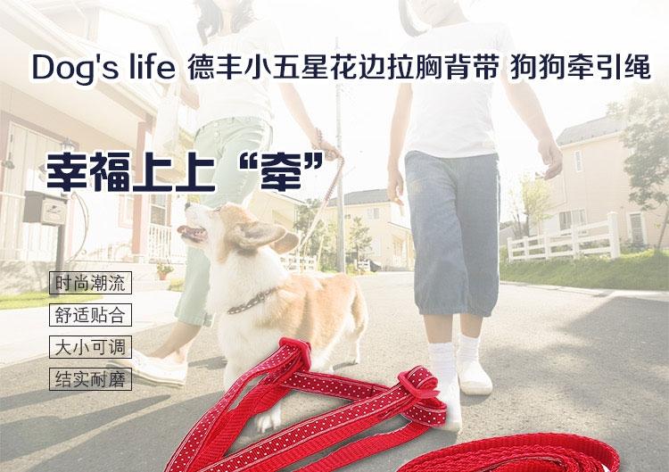 德丰Dog's life 小五星花边大红鹰dhy娱乐拉胸背带