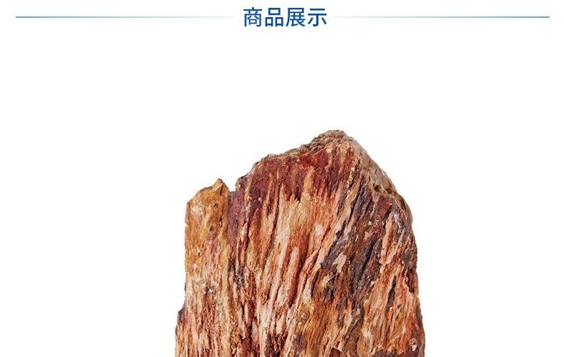 聚宝源 精品 松皮石 木化石 鱼缸水族箱造景装饰品龙骨水草造景石