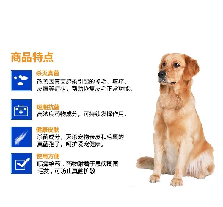 金盾 犬猫新一代皮特芬喷剂 100ml 真菌螨虫感染猫癣皮炎