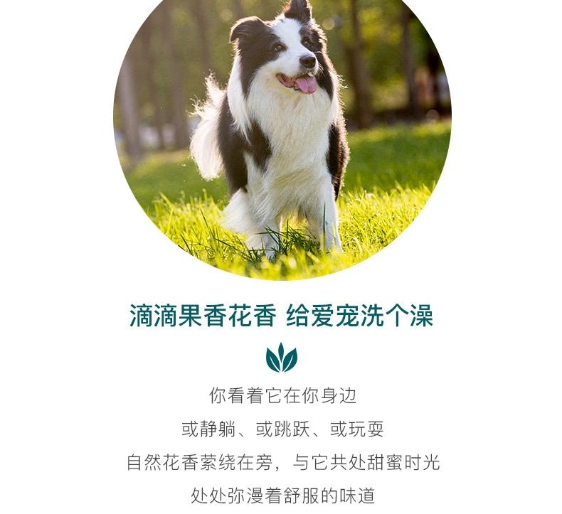怡亲Yoken 白毛犬专用香波500ml