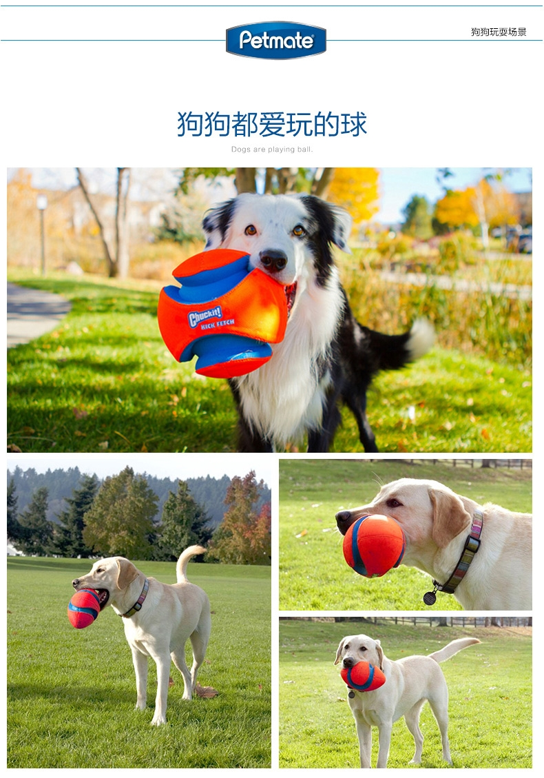 Petmate Chuckit!犬用户外足球