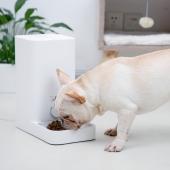 小佩 猫狗通用智能自动喂食器mini 防断电易拆洗