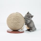 ZEZE 地球仪式猫抓球 含趣味配件