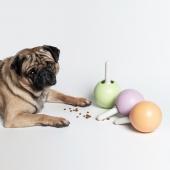 Pidan棒棒糖漏食球狗狗玩具 边吃边玩 益智控食
