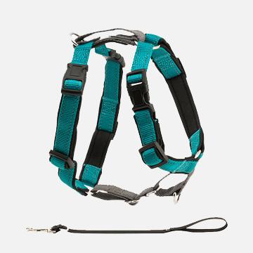 PetSafe 3合1狗胸背带